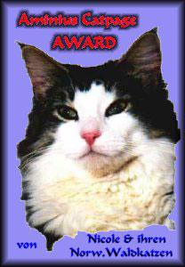 Aminius Catpage AWARD
